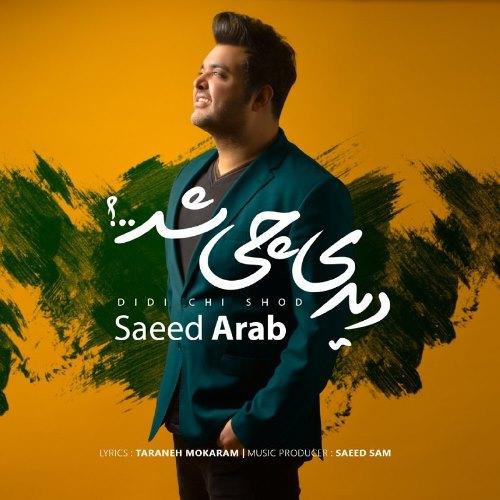 دانلود آهنگ دیدی چی شد از سعید عرب