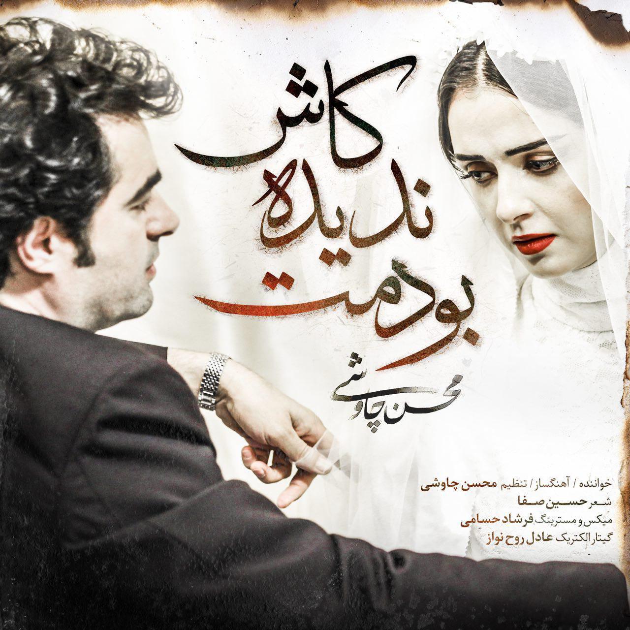 دانلود آهنگ کاش ندیده بودمت از محسن چاوشی
