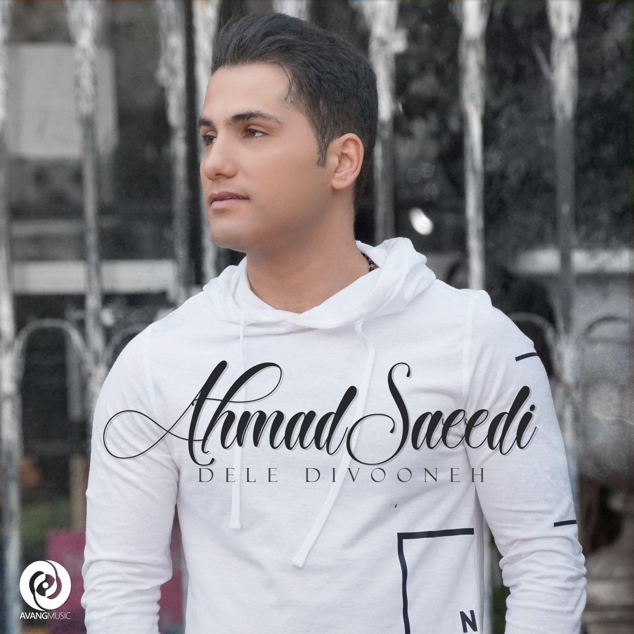 دانلود آهنگ دل دیوونه از احمد سعیدی