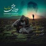 دانلود آهنگ دیوانه عشق از سعید شیدا