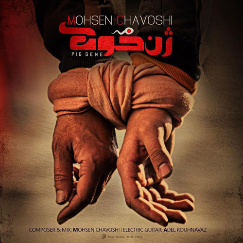 دانلود آهنگ حلالم کن از محسن چاوشی