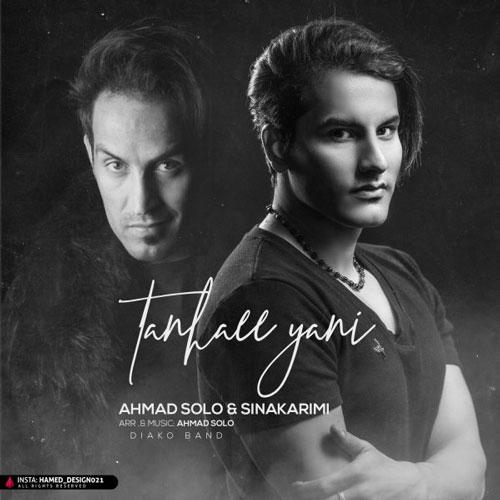 دانلود آهنگ تنهایی یعنی از احمد سلو