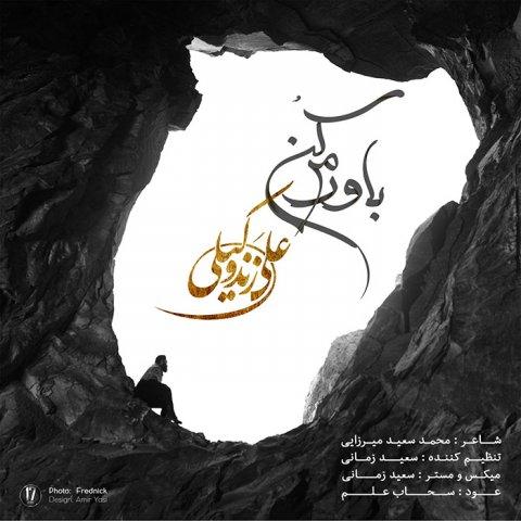 موزیک ویدیو باورم کن از علی زند وکیلی