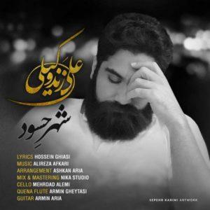 موزیک ویدیو شهر حسود از علی زند وکیلی
