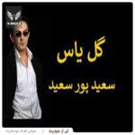 دانلود آهنگ گل یاس از سعید پور سعید